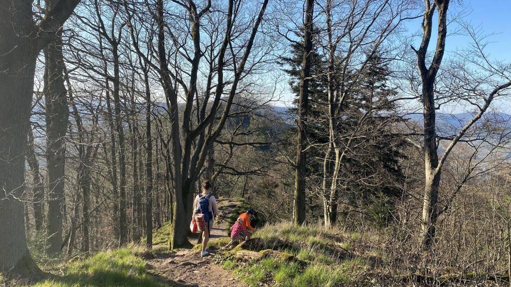 Burg Trifels Wandern
