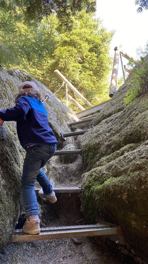 Wildnispfad Klettern