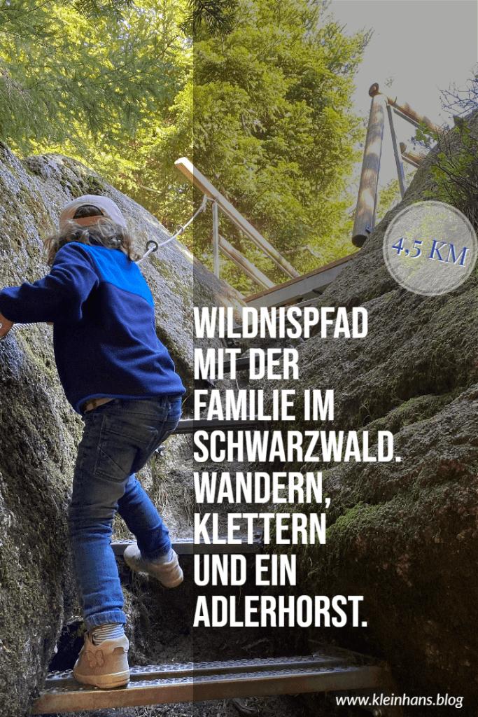 Wandern Nordschwarzwald Wollsackfelsen