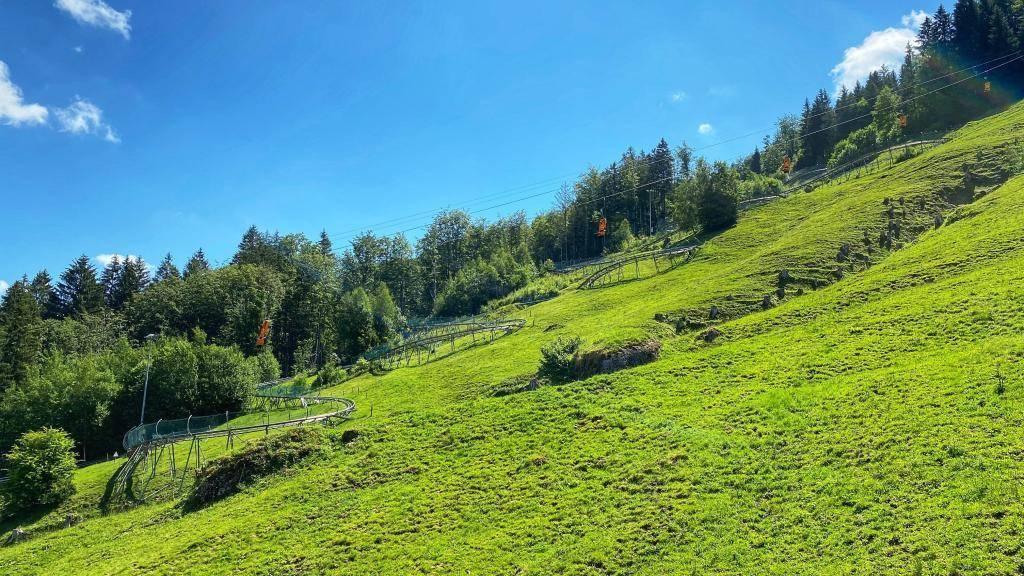 Alpsee Bergwelt Coaster Strecke