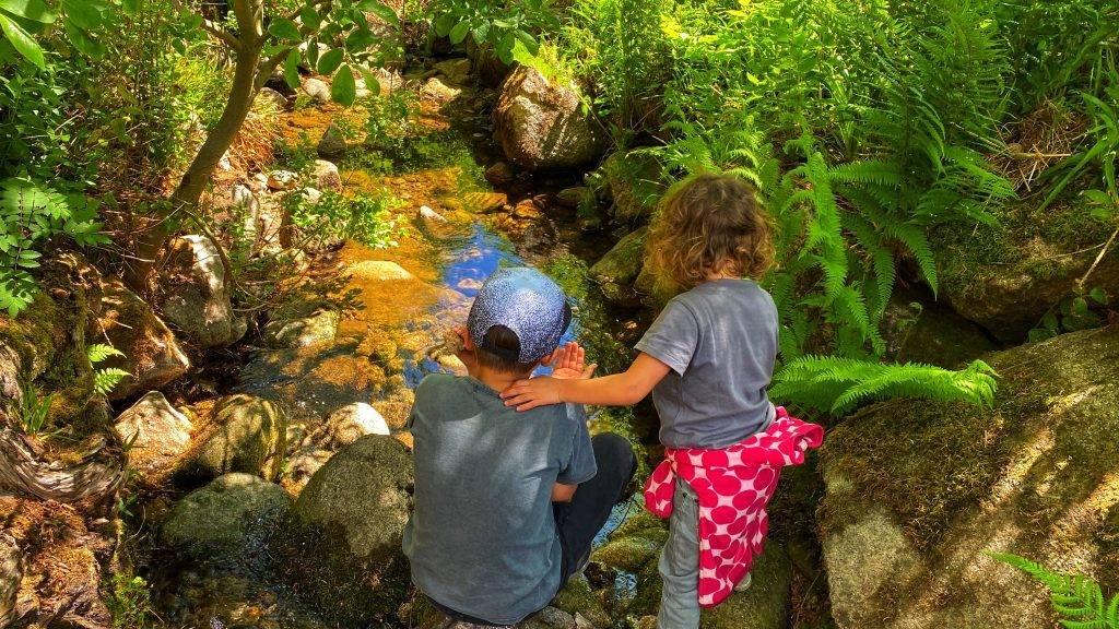 Schwarzwald Wasser Kinder