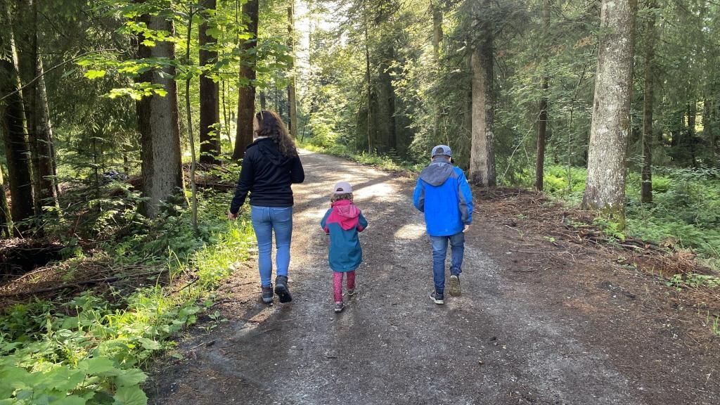 Kuhnigundenweg Waldweg