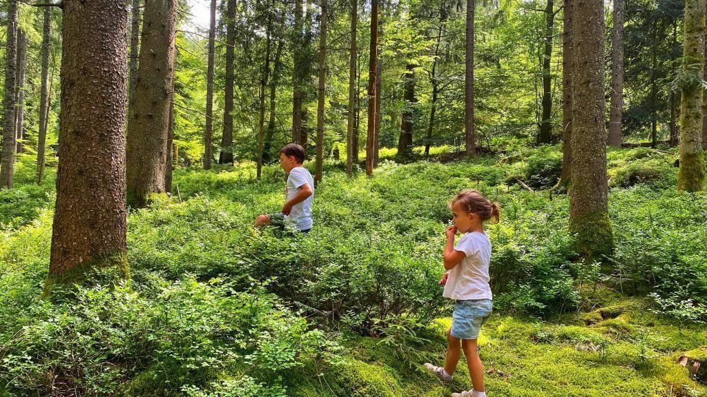 Schwarzenbach Talsperre Wandern Wald Kinder