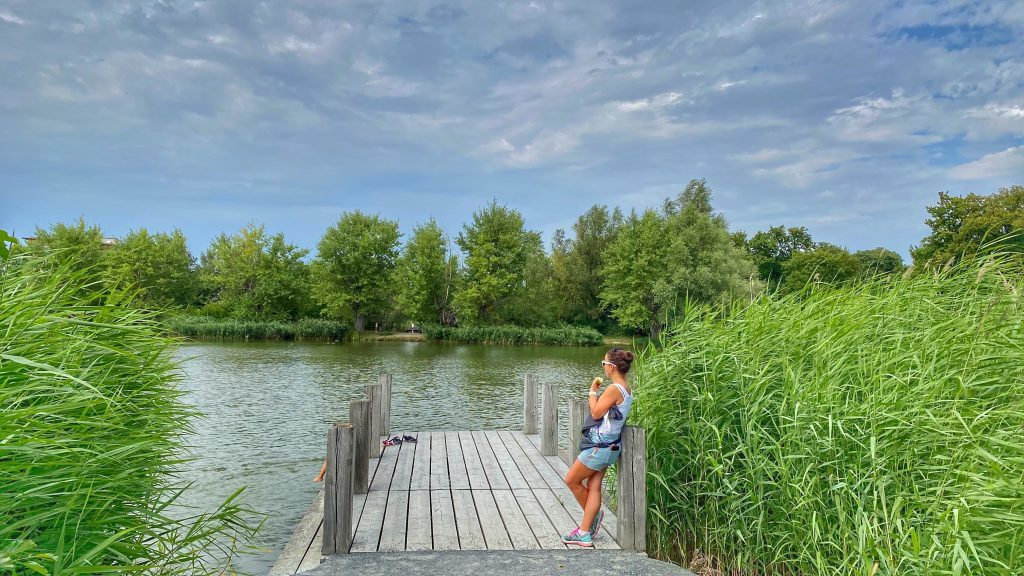 See mit Steg Bürgerpark Wernigerode