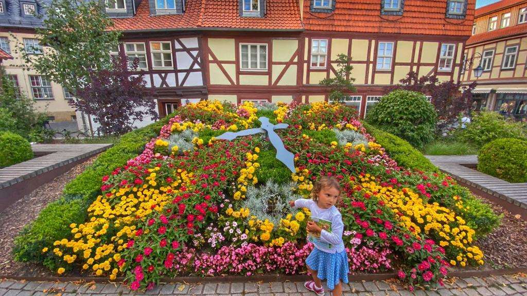 Blumenuhr Wernigerode