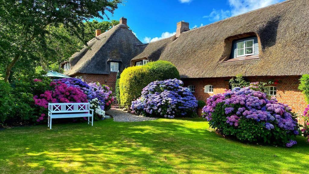 Garten Altes Pastorat