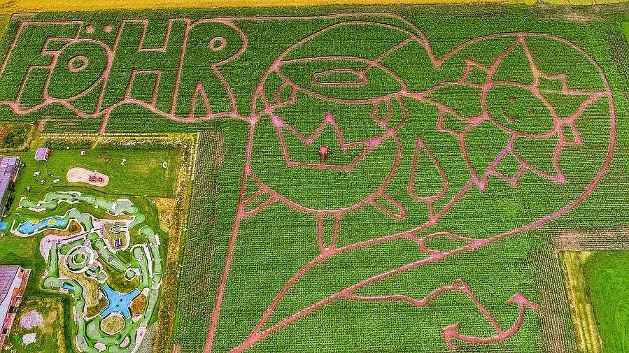 Maislabyrinth Föhr