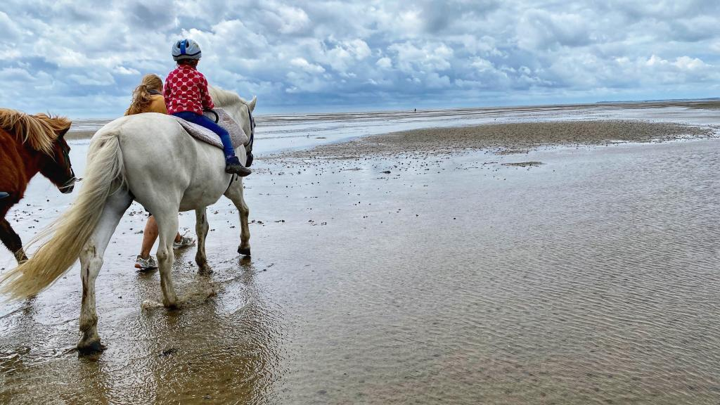 Pony Reiten Föhr