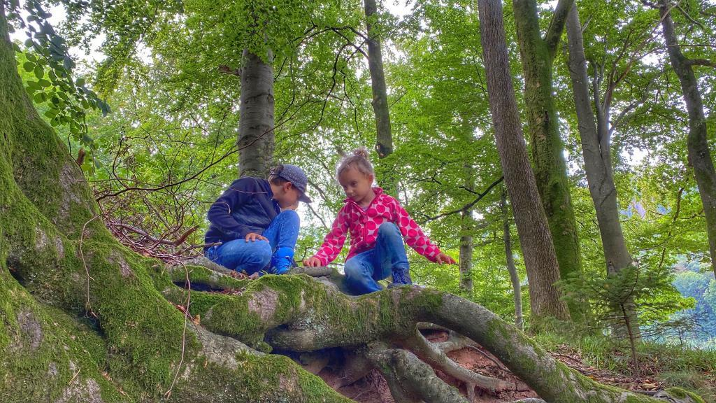 Schnitzeljagd im Schwarzwald