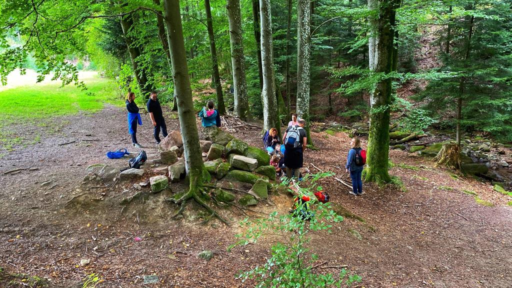Kindergeburtstag Schwarzwald