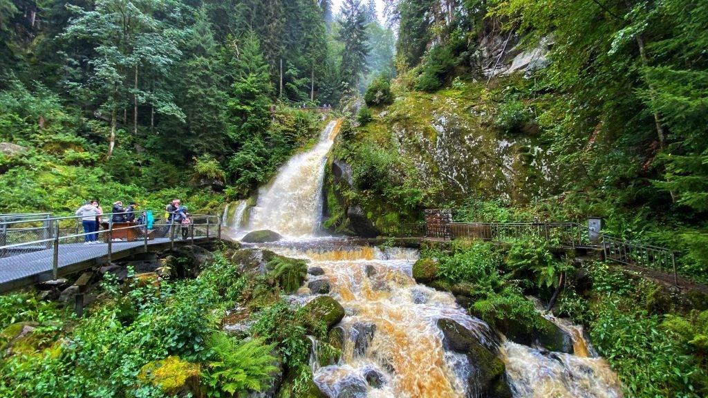 Ausflug Familien Schwarzwald