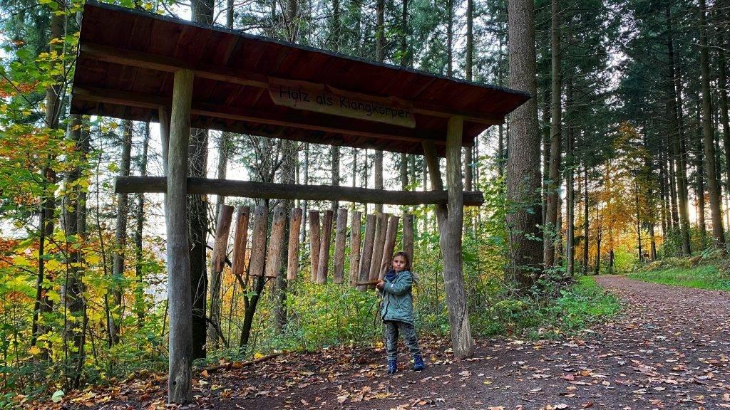 Holz Klangkörper Schwarzwald