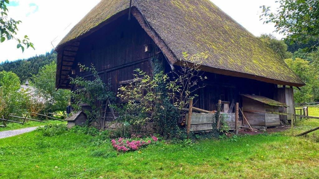 alte Schwarzwälder Hütte
