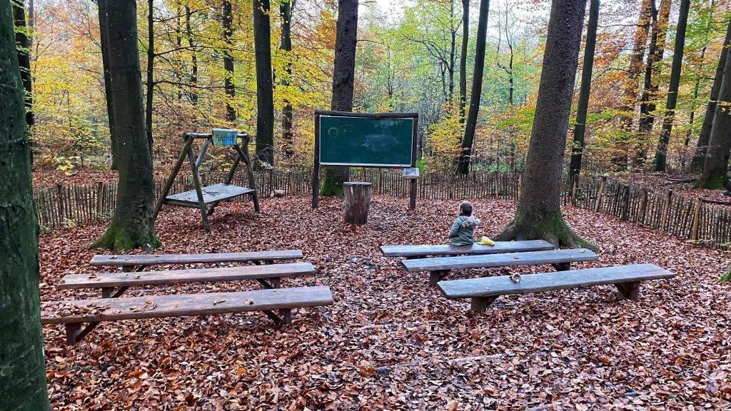 Waldklassenzimmer Schwarzwald