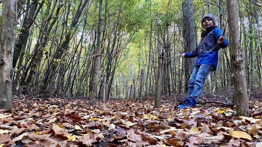 Waldlabyrinth Walderlebnispfad