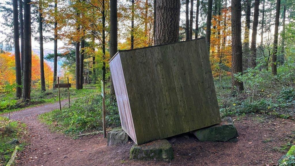 Waldlehrpfad Schwarzwald