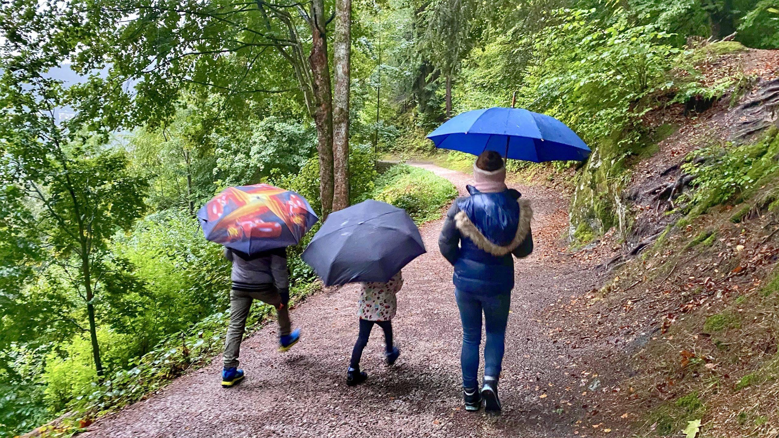 Ausflugstipp Schwarzwald