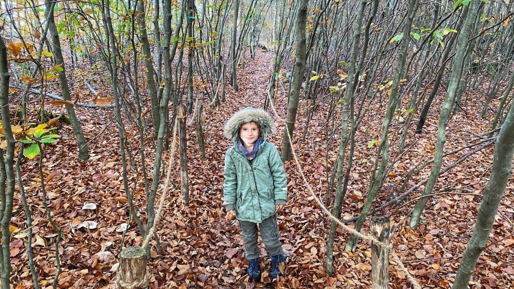Waldlabyrinth Schwarzwald